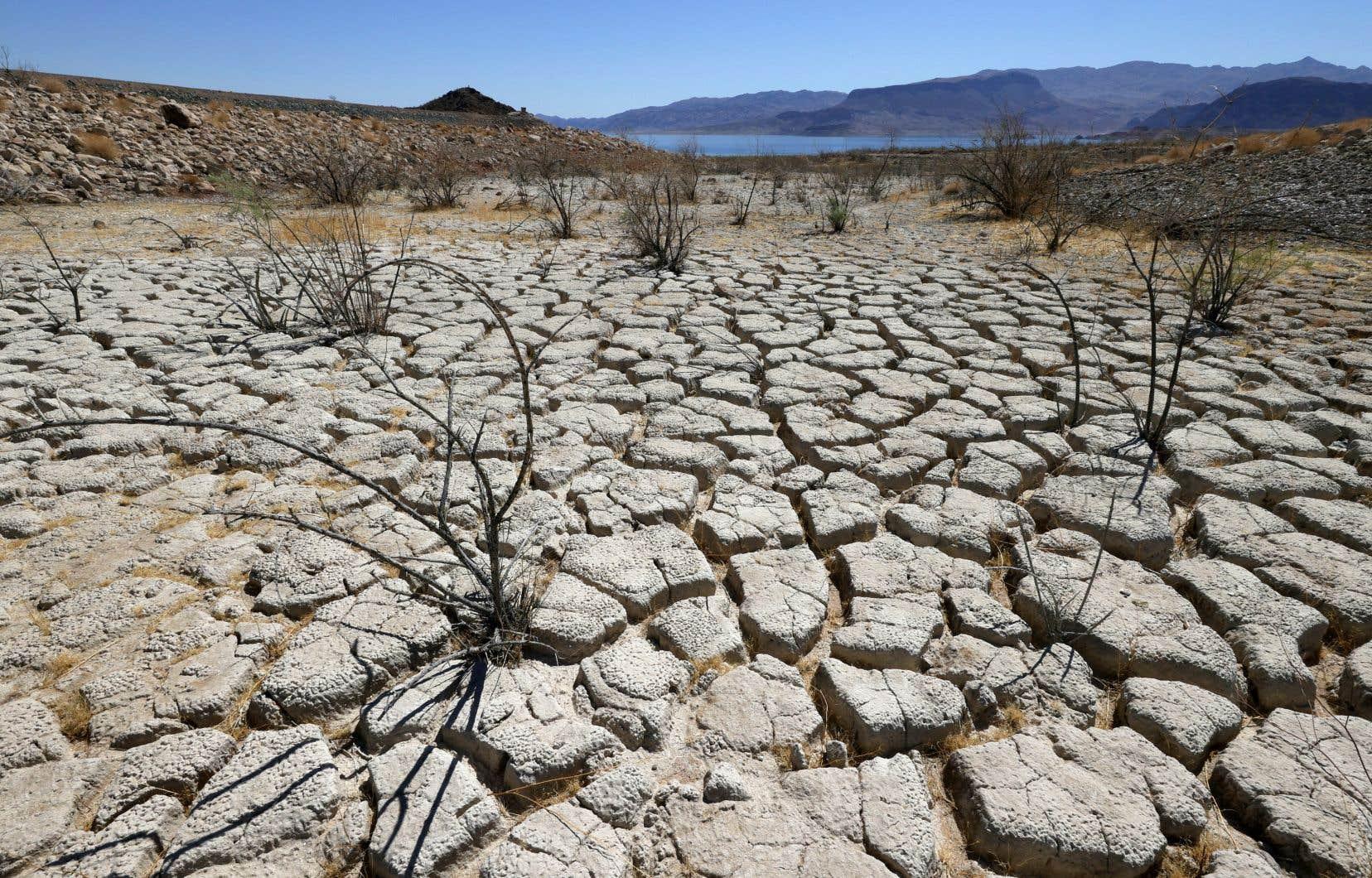 Les pays du G7 ont promis d'accélérer la lutte contre la crise climatique, au moment où une sécheresse majeure frappe l'Ouest américain, comme ici, dans le Nevada.