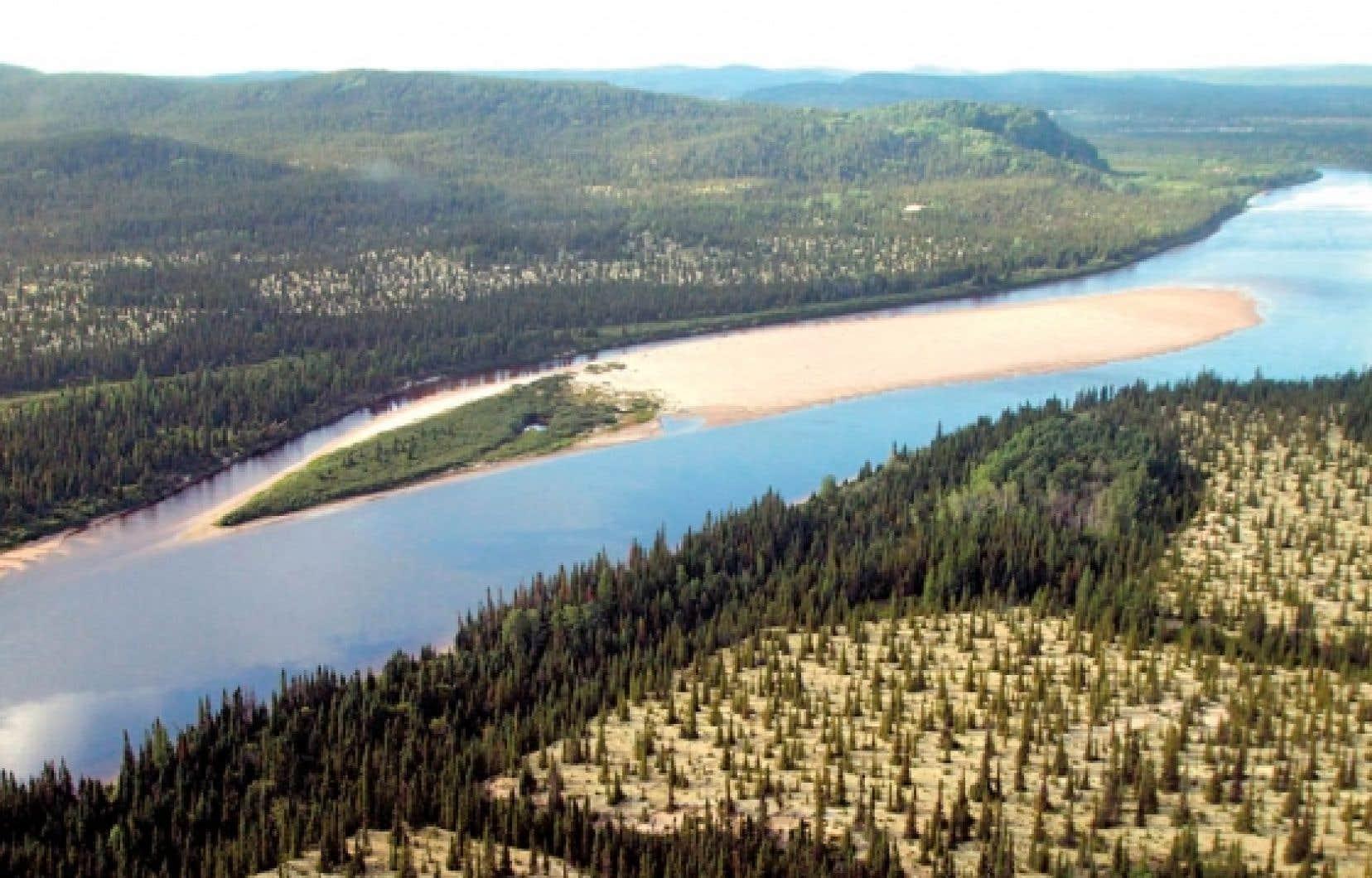 Rivière à saumon longue de près de 500 kilomètres, la Romaine traverse une forêt boréale québécoise exceptionnellement riche en biodiversité.<br />
