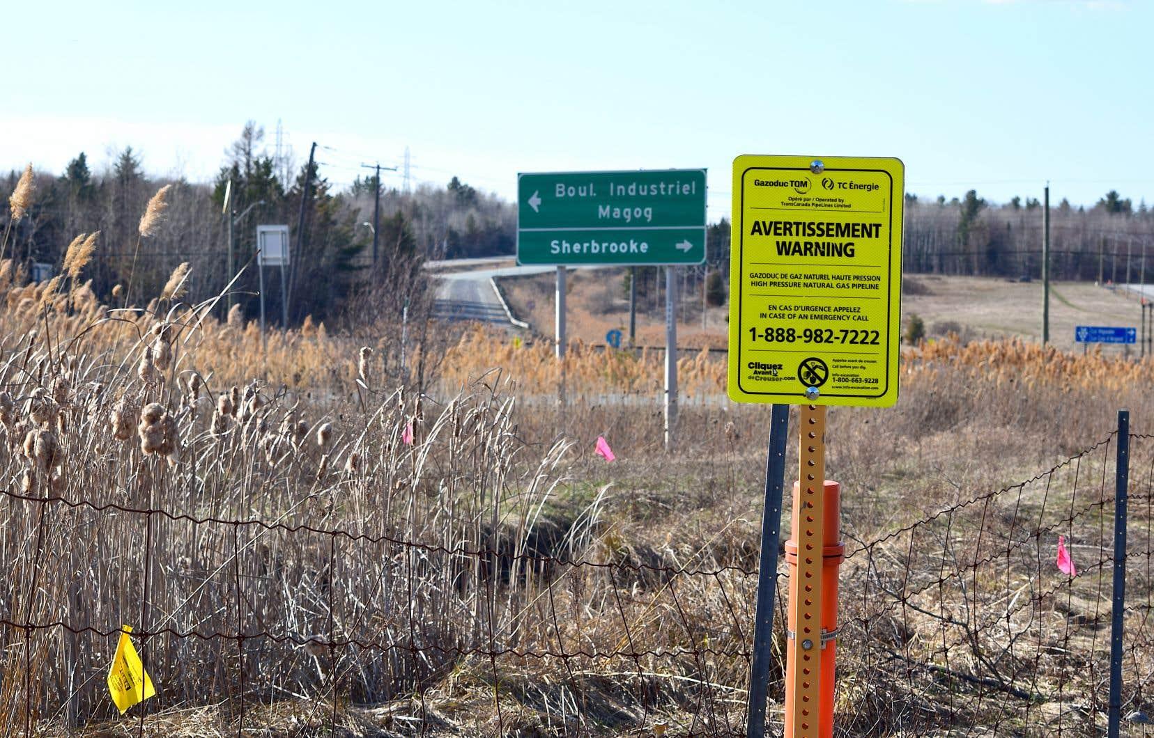 Puisque Pieridae Energy compte liquéfier du gaz albertain, le transport du gaz jusqu'à son usine de Nouvelle-Écosse nécessiterait l'utilisation du réseau de gazoducs Trans Québec et Maritimes. Il transiterait donc par un gazoduc qui traverse l'est de l'île de Montréal, puis une partie de la Montérégie et de l'Estrie, avant de franchir la frontière américaine.