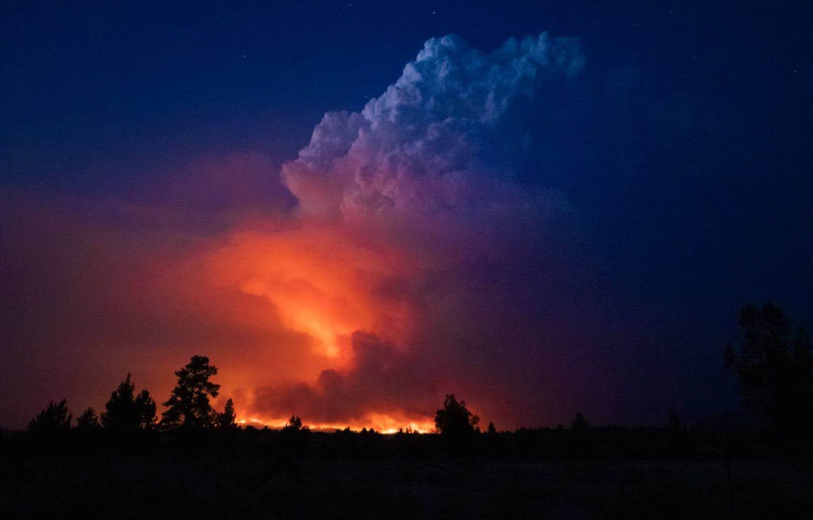 Très proche de la Californie, l'incendie dans le sud de l'Oregon menace aussi le réseau électrique de cet État et les autorités veulent à tout prix éviter que des millions de personnes soient plongées dans le noir, comme ce fut le cas les années précédentes.