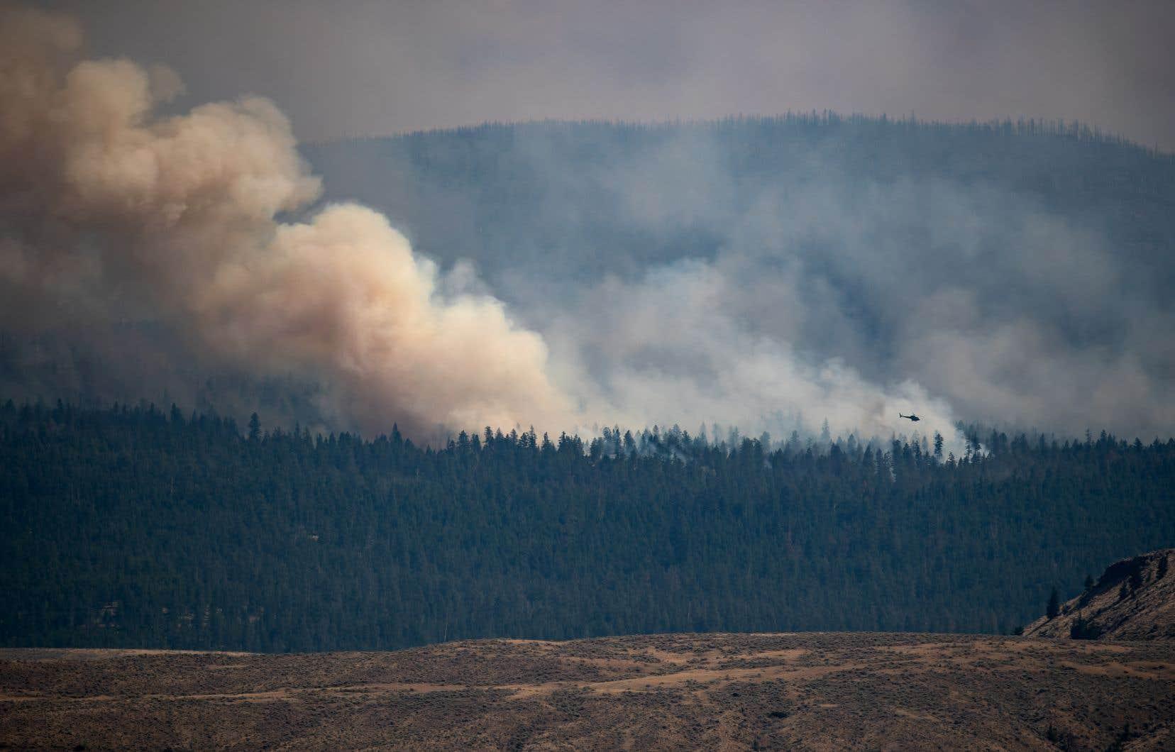Un hélicoptère survolant les feux de forêt près du village d'Ashcroft, situé dans le district régional de Thompson-Nicola, le 16 juillet dernier