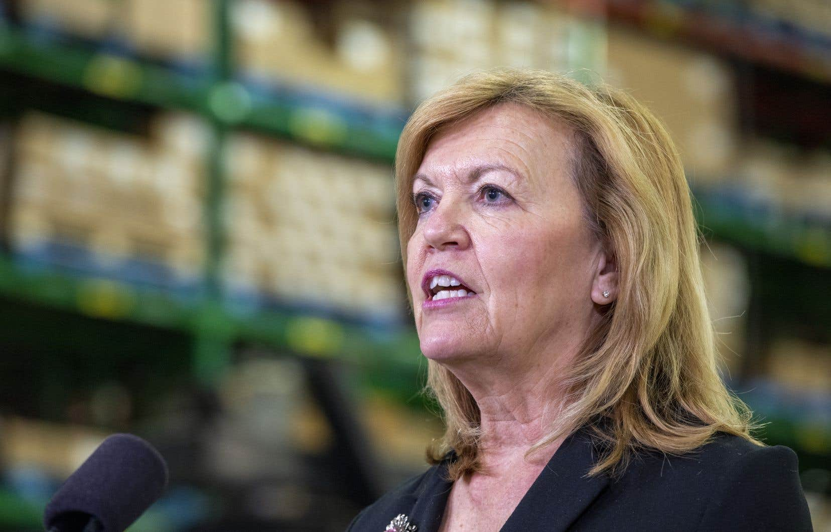 La ministre ontarienne de la Santé, Christine Elliott, avec la solliciteuse générale, Sylvia Jones, a demandé la reconnaissance du calendrier mixte pour les voyageurs.