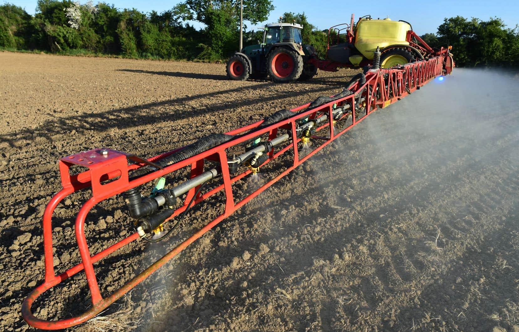 «Les méthodes différentes et rentables de contrôle des mauvaises herbes existent. Elles ont été développées en recherche. Toutefois, les producteurs agricoles n'y ont pas accès, faute de ressources en transfert, ou n'y croient tout simplement pas, peu encouragés par le conseil intéressé qui les encadre la plupart du temps», écritLouis Robert.