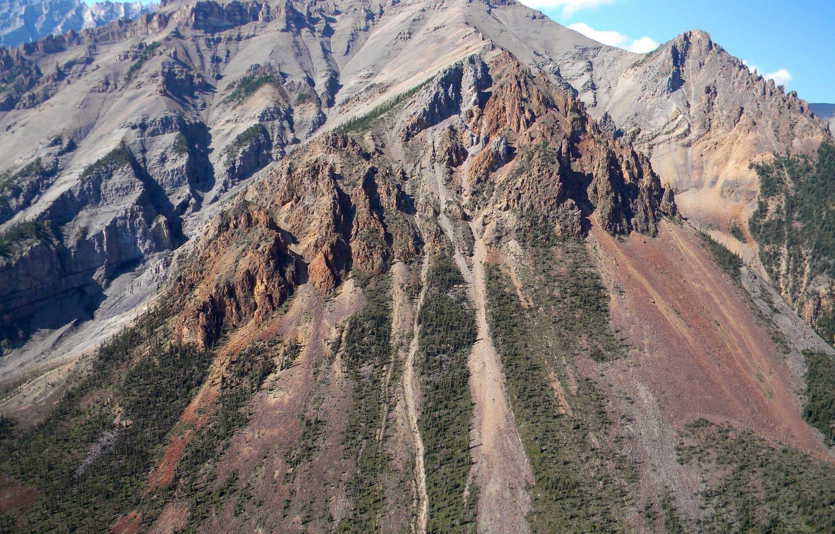 La géologue Elizabeth Turner a découvert ces roches dans une région éloignée des Territoires du Nord-Ouest, une région accessible uniquement par hélicoptère, où elle creuse depuis les années 1980.