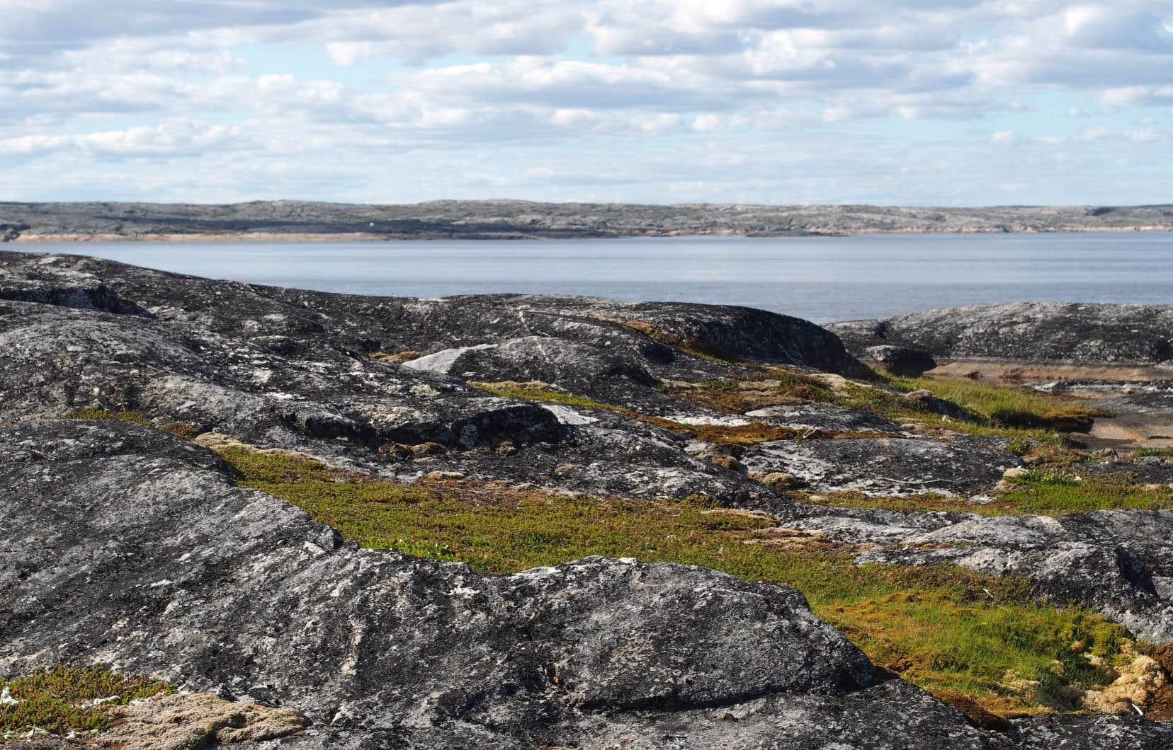 La rivière Koksoak serpente dans la toundra arctique, au milieu de sommets rocheux et sans arbres, parsemés de mousses et de lichens. Son bassin fluvial est recouvert de pergélisol.