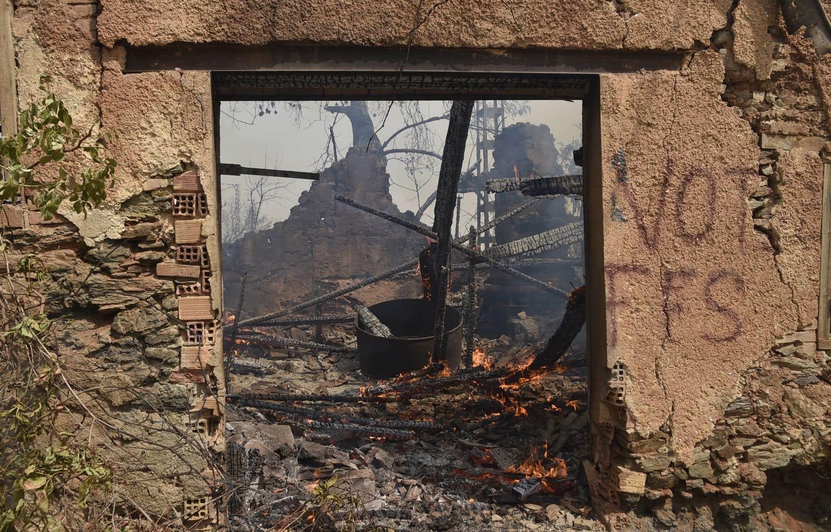 Parmi les 13 décès de civils dans ces incendies, 12 ont eu lieu dans la région de Tizi Ouzou, l'une des villes les plus peuplées de Kabylie.