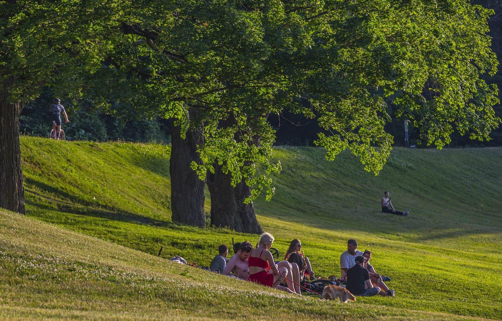 Depuis quelques années, le financement annuel de l'entretien du parc du Mont-Royal provenant de la ville-centre oscille entre 2,2 et 2,3millions de dollars.