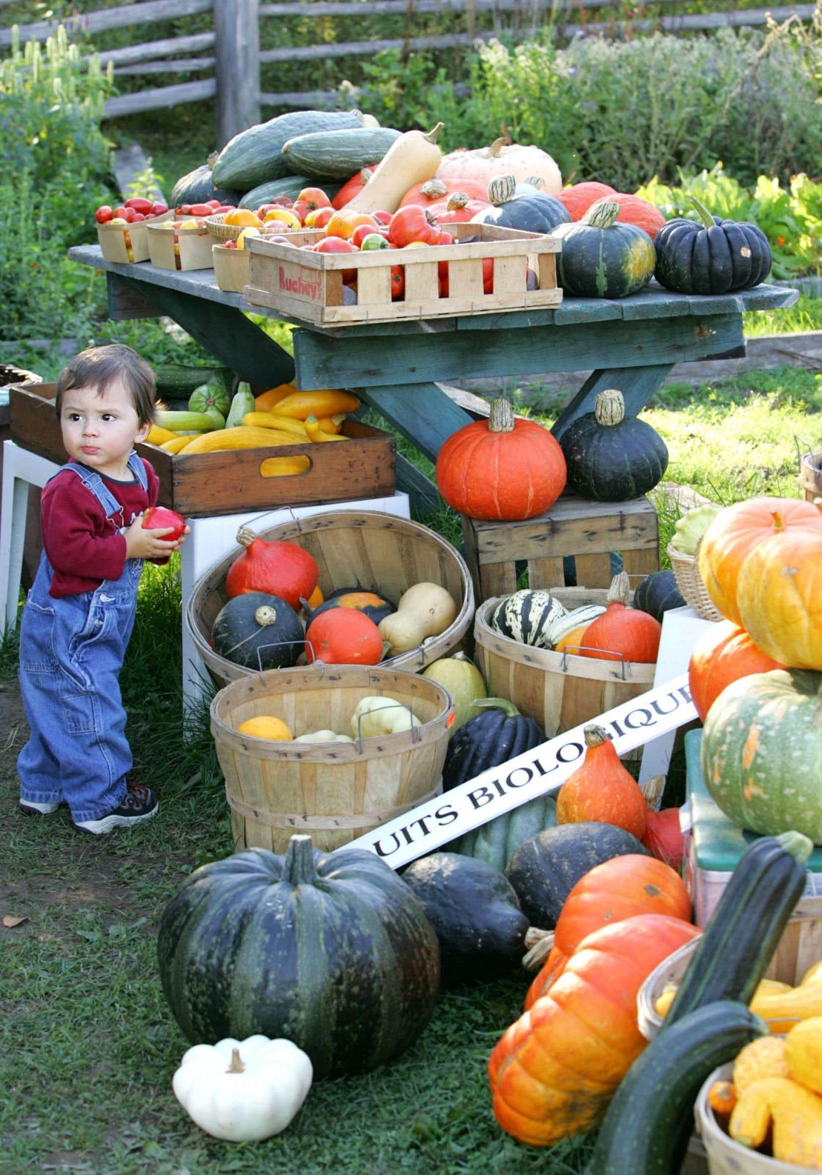 Les producteurs biologiques ont évolué et les consommateurs aussi. Il serait plus avantageux pour tous d'insérer les produits biologiques avec les produits conventionnels.