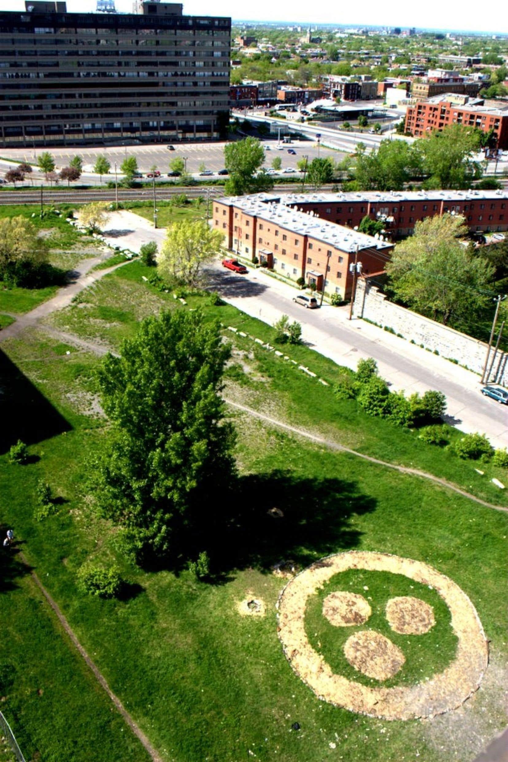 Le fameux symbole Roerich,utilisé pendant la Seconde Guerre mondiale sur les endroits publics pour les soustraire aux bombardements aériens, a été tracé sur le terrain devenu parc sauvage.