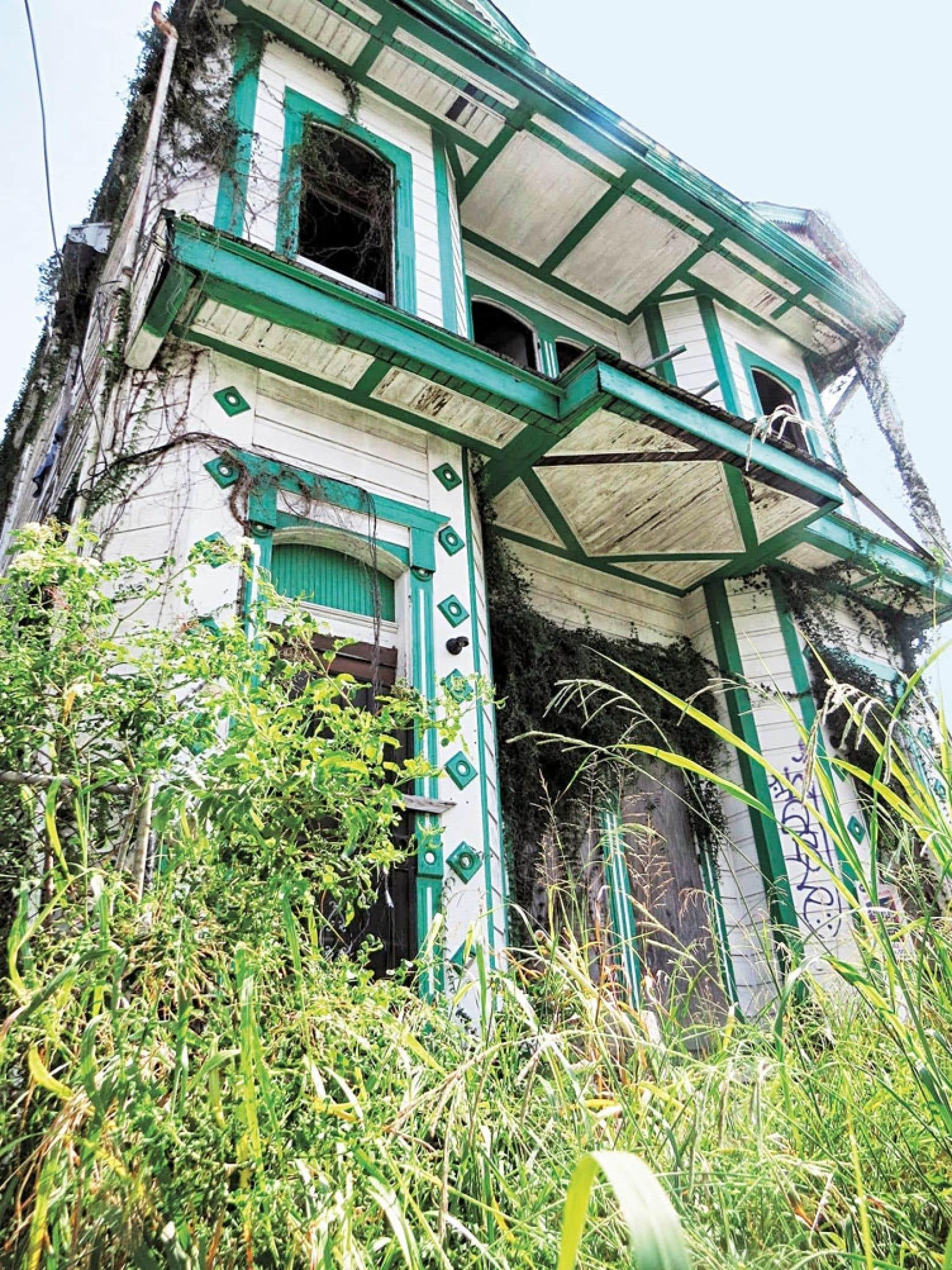 De petites jungles verdoient autour de demeures laissées en ruine par le passage de l'ouragan Katrina.