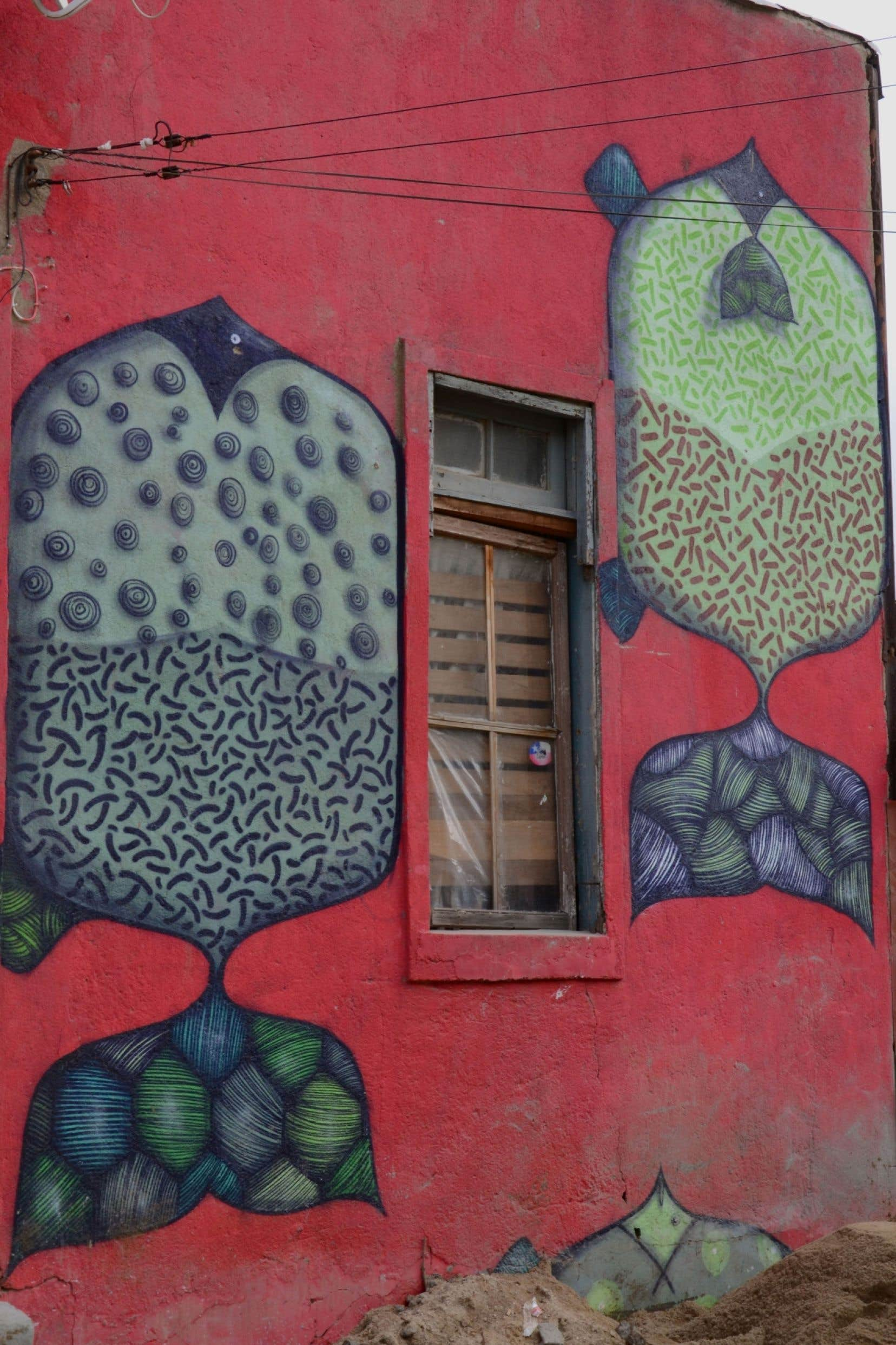 Détail d'une maison dont la façade a été entièrement peinte par Finok, un Brésilien de passage à Valparaíso pour le Graffestival.