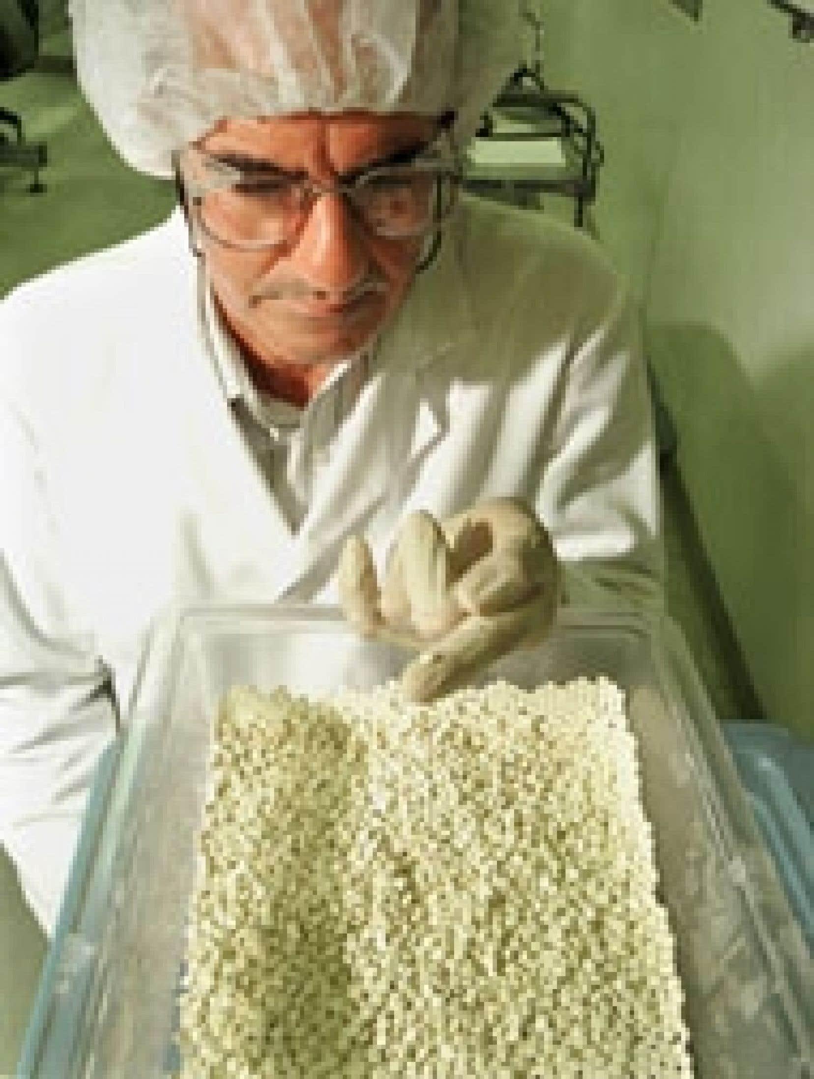 Examen du Vioxx dans un laboratoire américain.