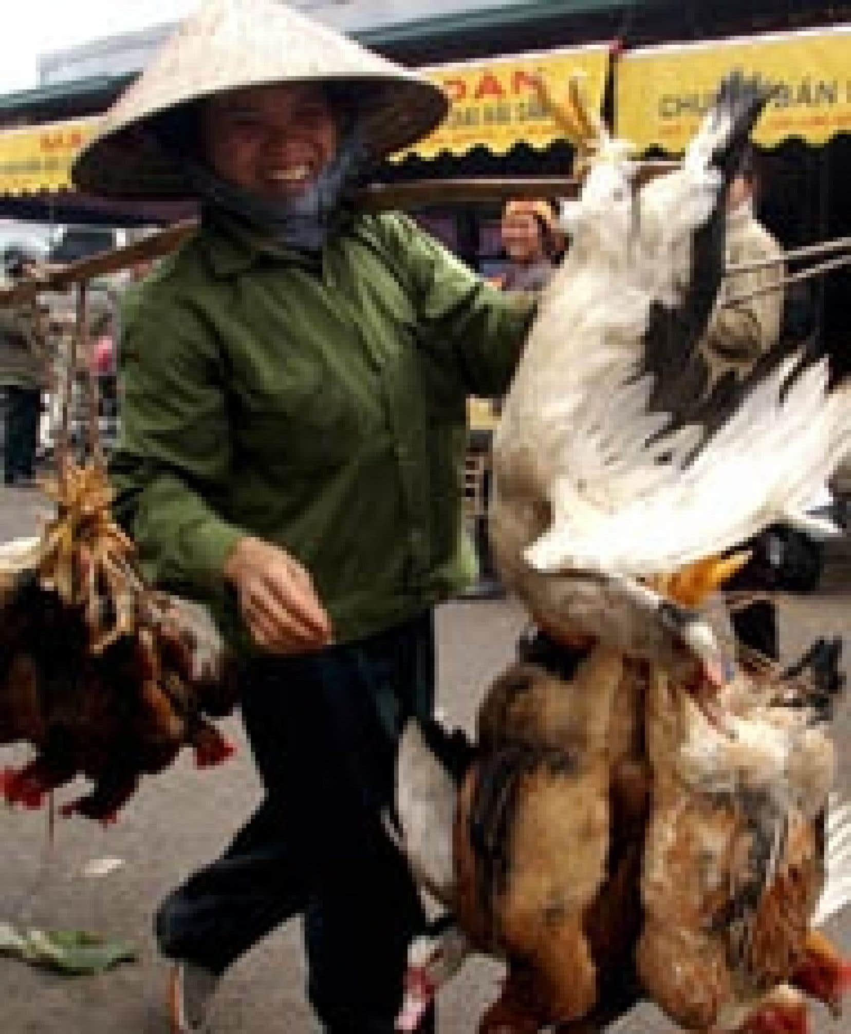 Scène de la vie quotidienne au marché Long Bien, à Hanoï.