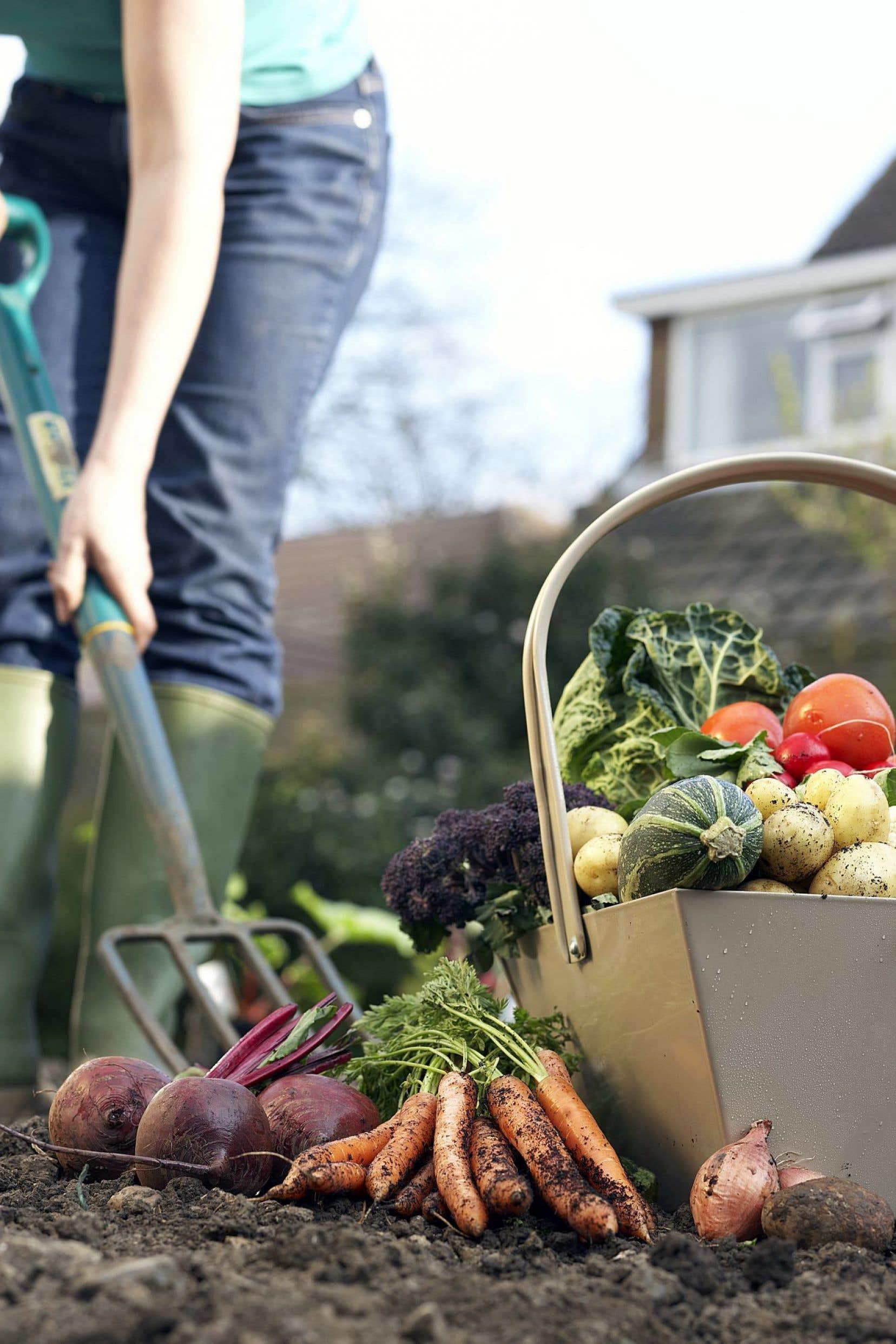 Les aliments biologiques ne sont pas forcément une garantie de meilleur goût.