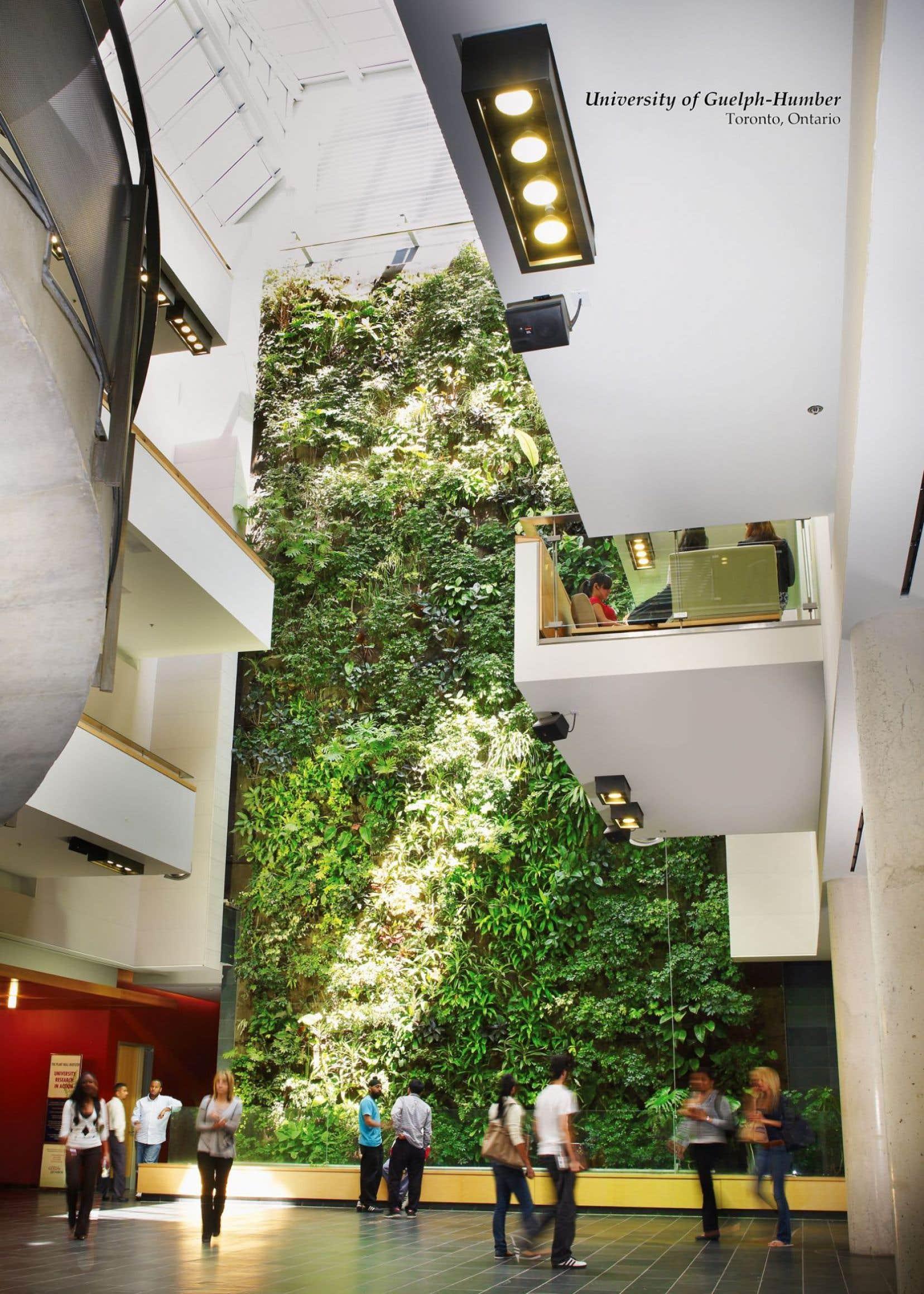 Le DrAllan Darlington a présenté les résultats obtenus avec un biofiltre botanique, qui est, en fait, un mur végétalisé intégré à un système d'aération de bâtiment. Selon les résultats, ce système peut éliminer jusqu'à 47% des polluants.