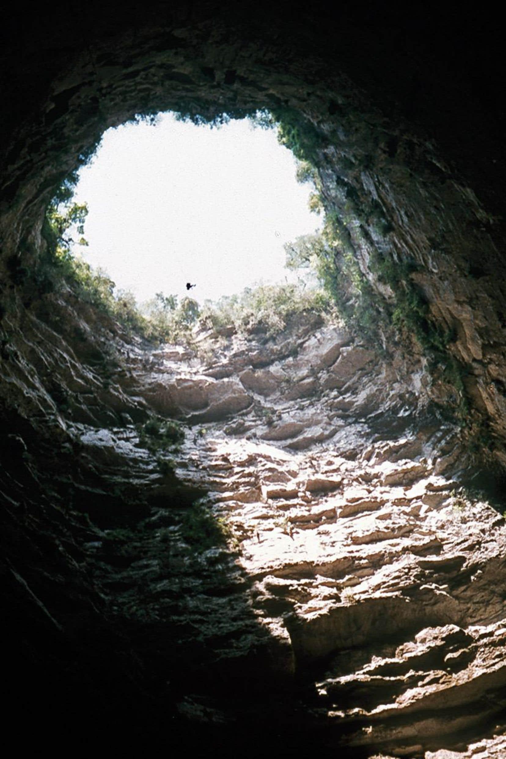 La cave El Sótano de las Golondrinas, d'un peu moins d'un demi-kilomètre de profondeur. Le soir, une colonie d'oiseaux retournent à 150km/h y passer la nuit dans leur nid.