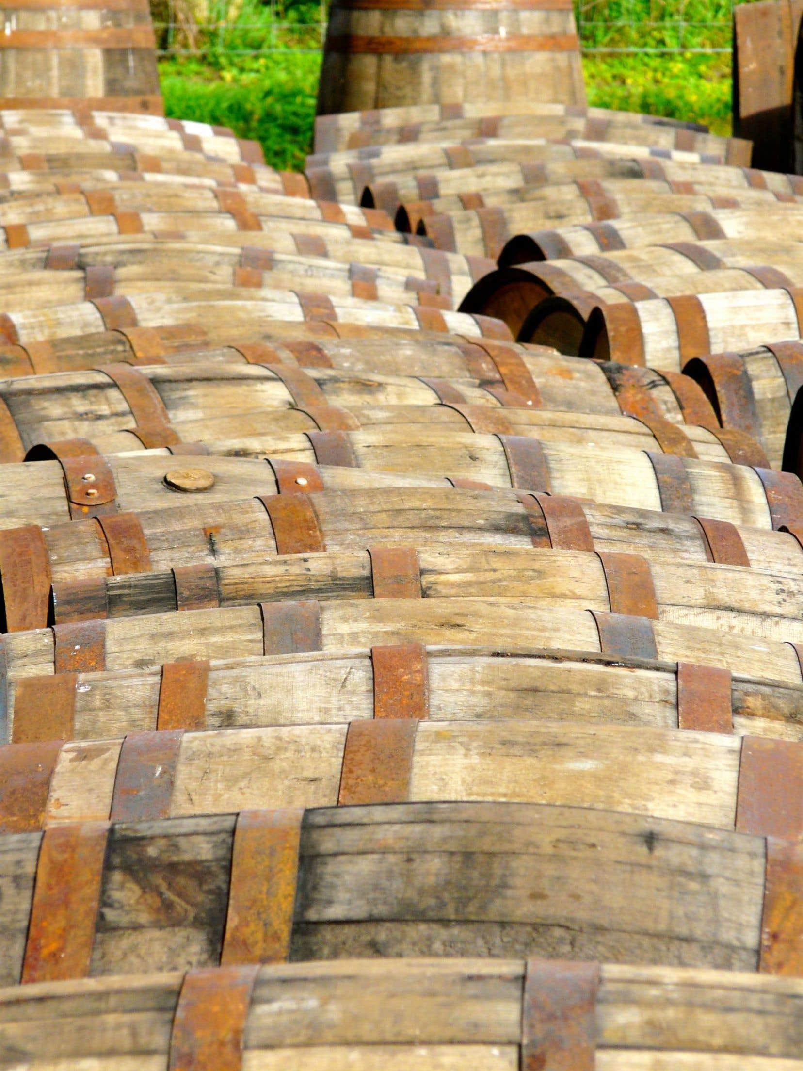 Fûts de whisky avant le remplissage