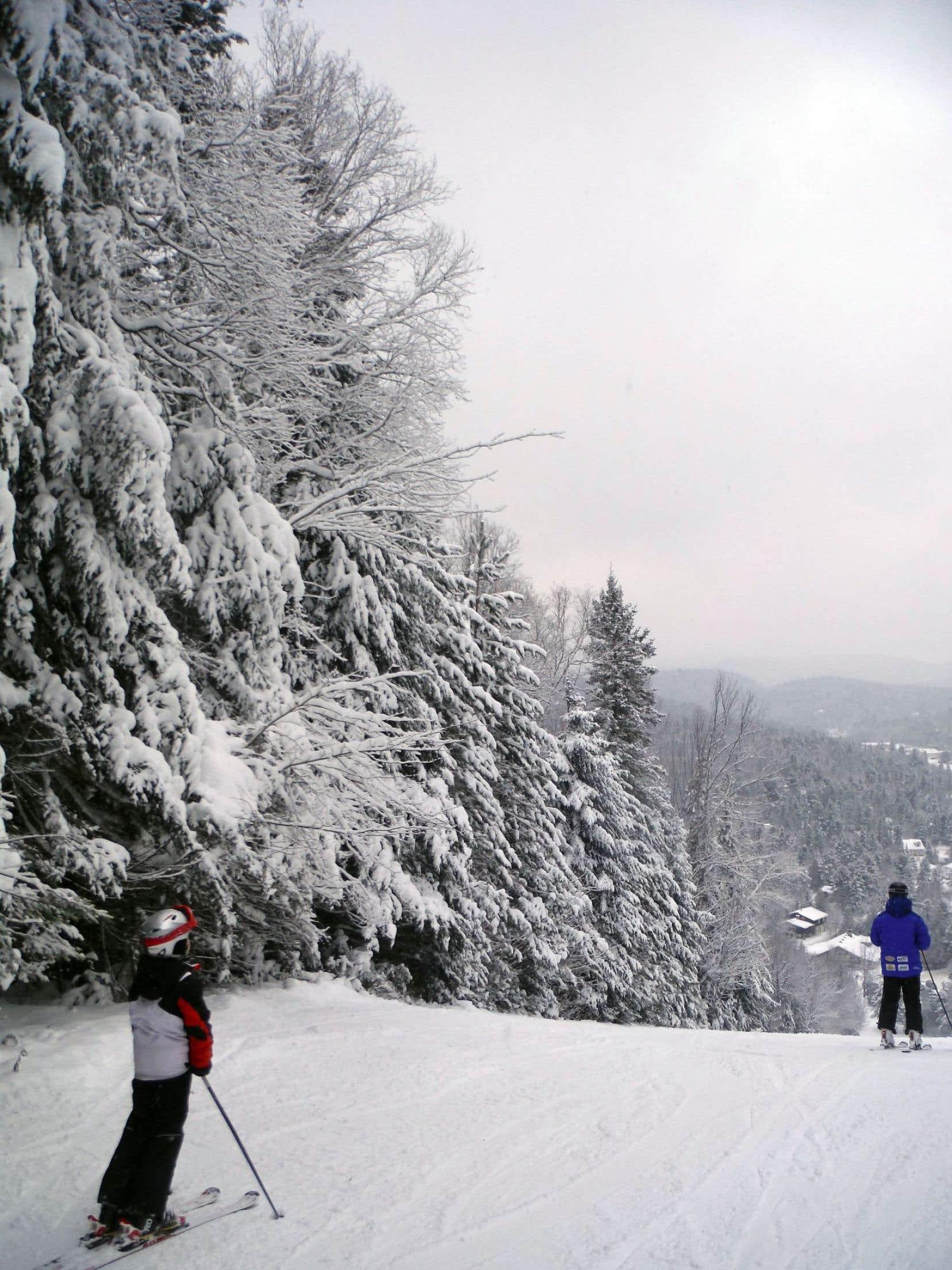 L'essentiel du domaine skiable de cette station de Val-David, dans les Laurentides, est de niveau débutant, les quelques pistes pour experts n'ayant d'expert que le nom.