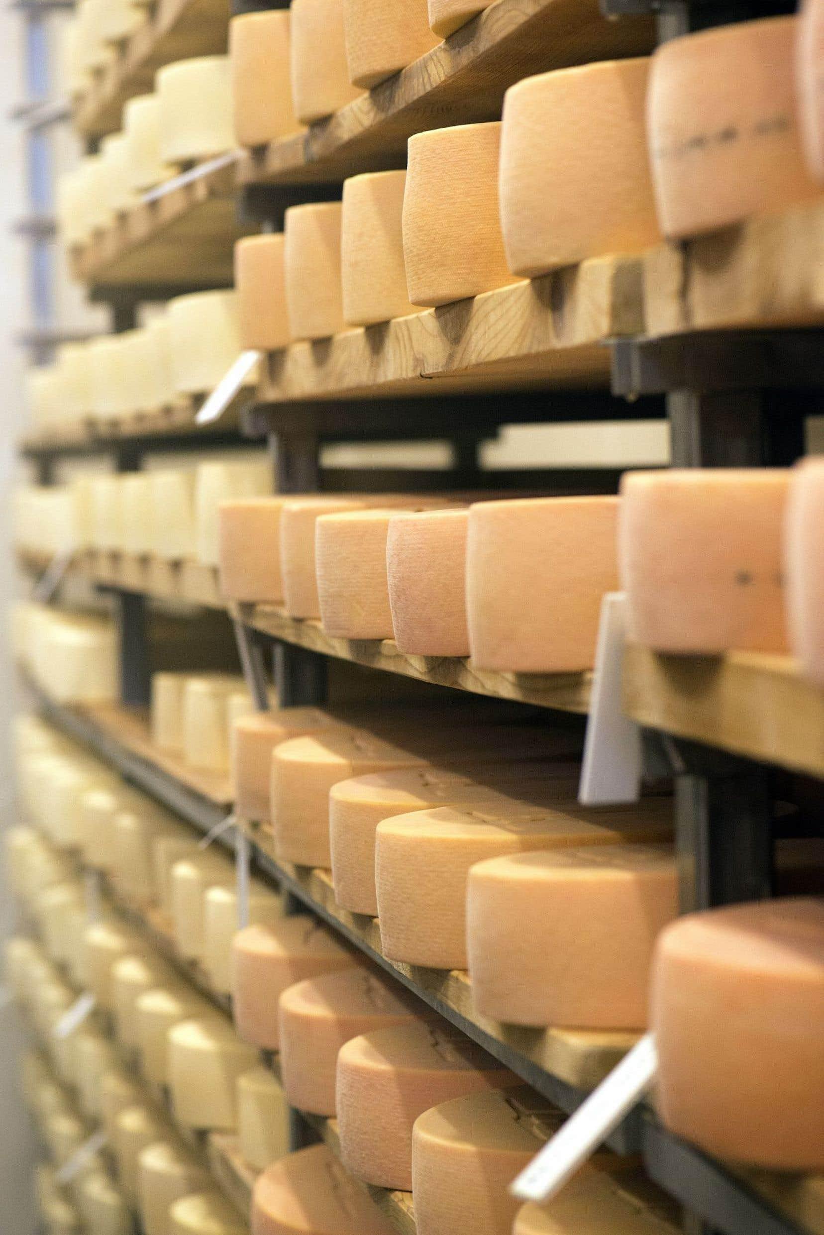 Les consommateurs ne peuvent pas vraiment s'attendre à des baisses substantielles du prix des fromages.