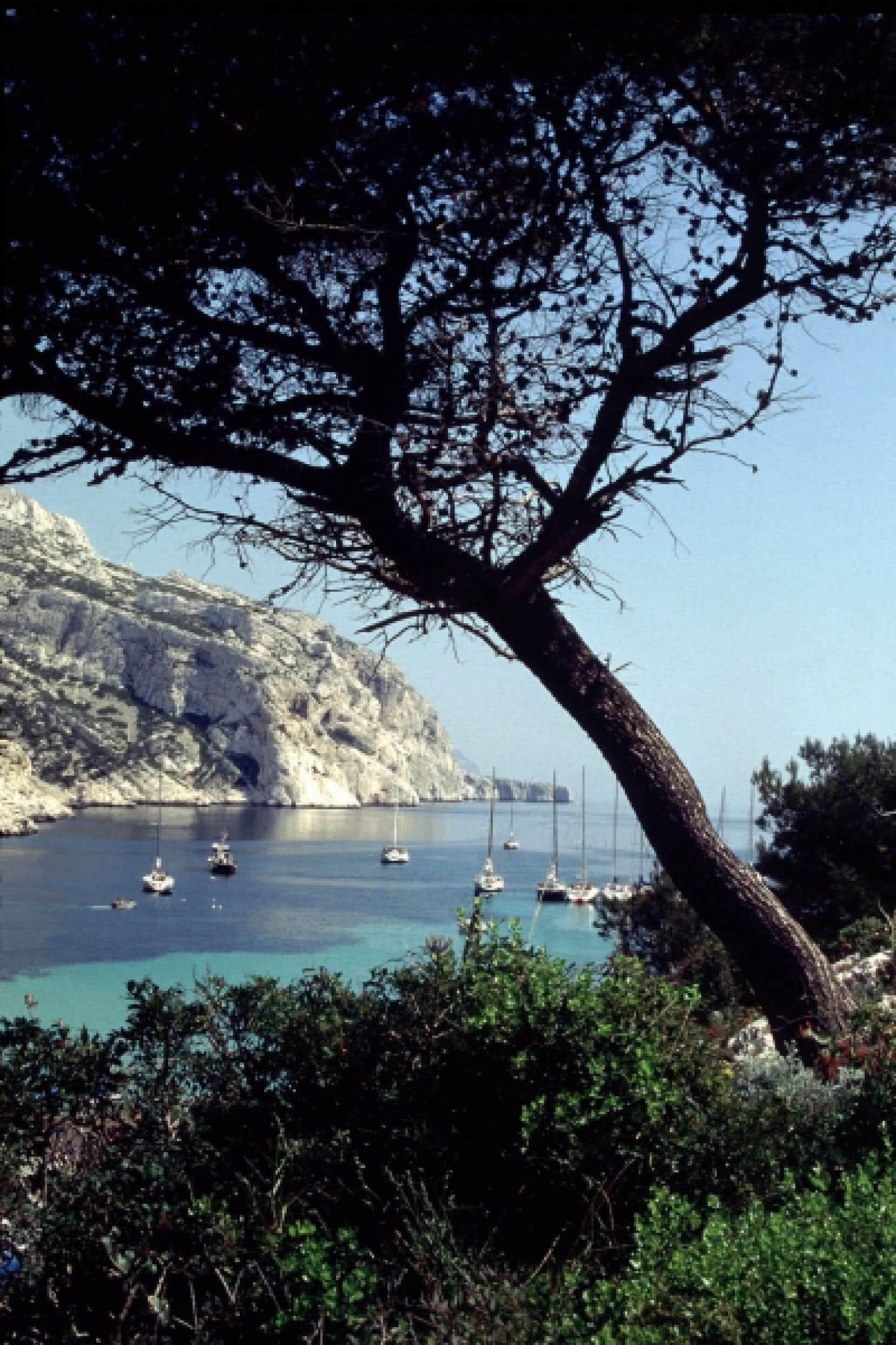 Les calanques, entre Marseille et Cassis, en France.