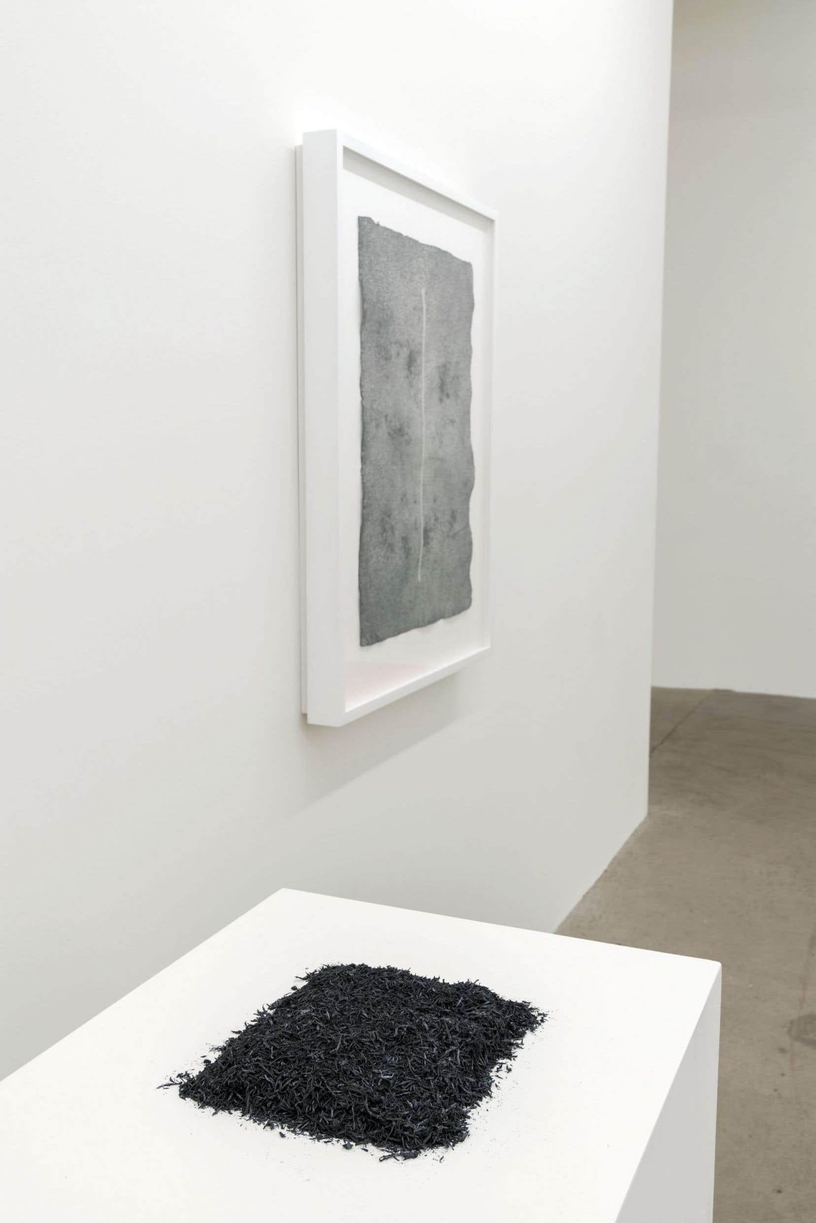 Vue sur «Les restes», de Simon Bertrand, 2016