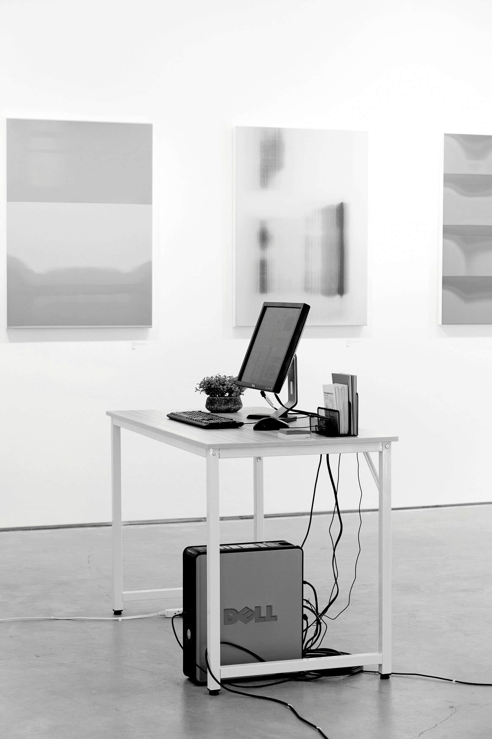 Adam Basanta, «Tout ce dont nous aurons besoin est l'un et l'autre», vue de l'installation à la galerie Ellephant
