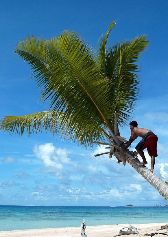 L'île de Tuvalu, en Océanie, une des premières victimes potentielles des dérèglements du climat.<br />