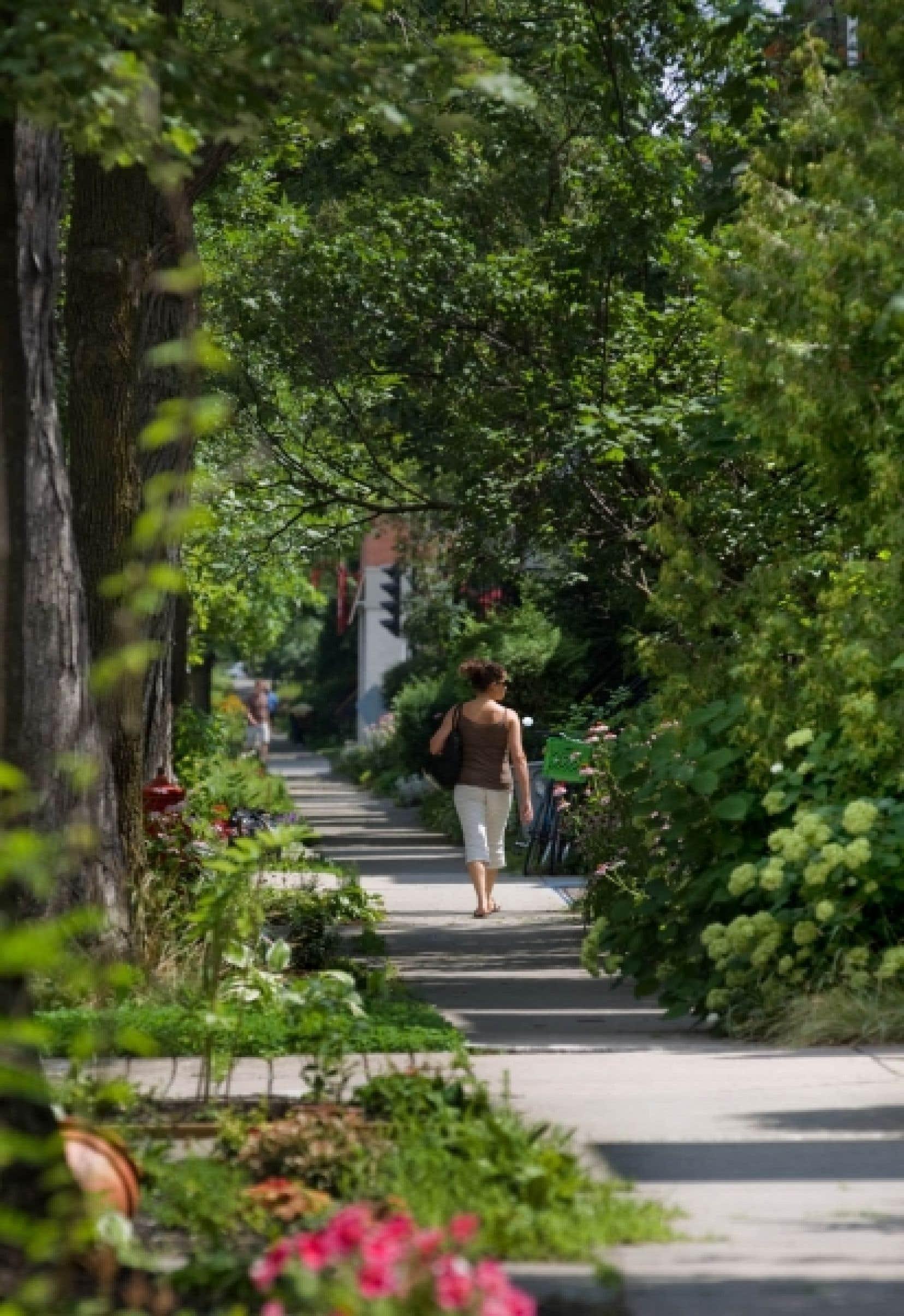 Exemple d'aménagement vert dans Rosemont–Petite-Patrie<br />