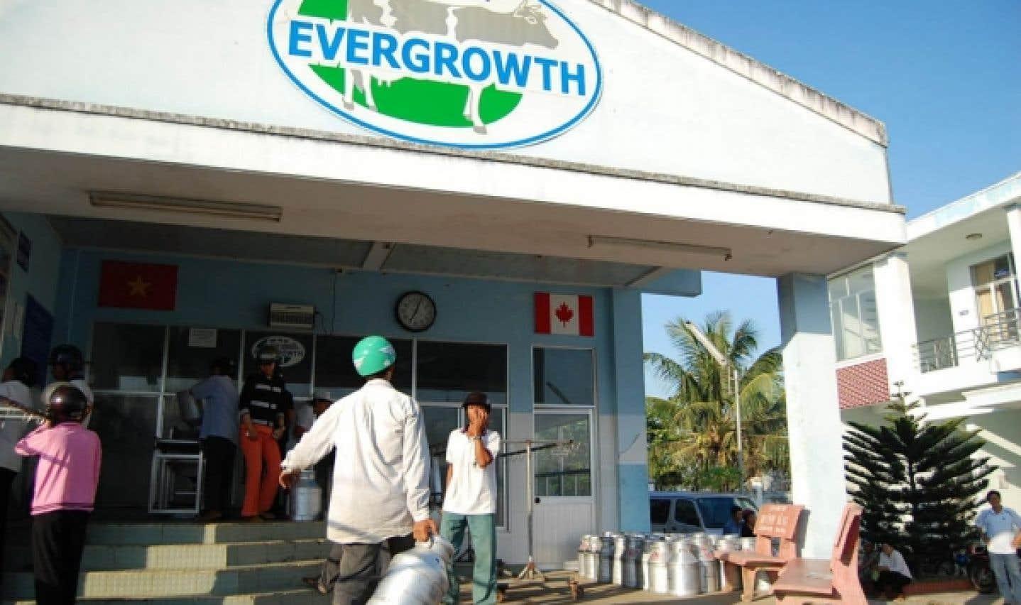 Une coopérative laitière au Vietnam