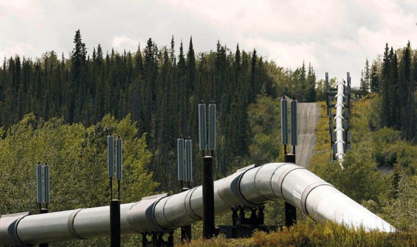 Environnement - Plein gaz dans les évaluations