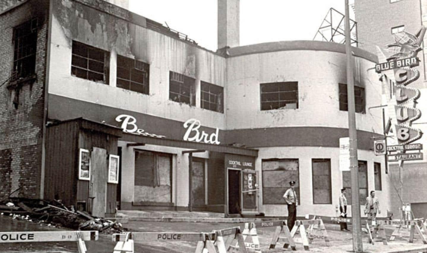 L'autre histoire du Blue Bird
