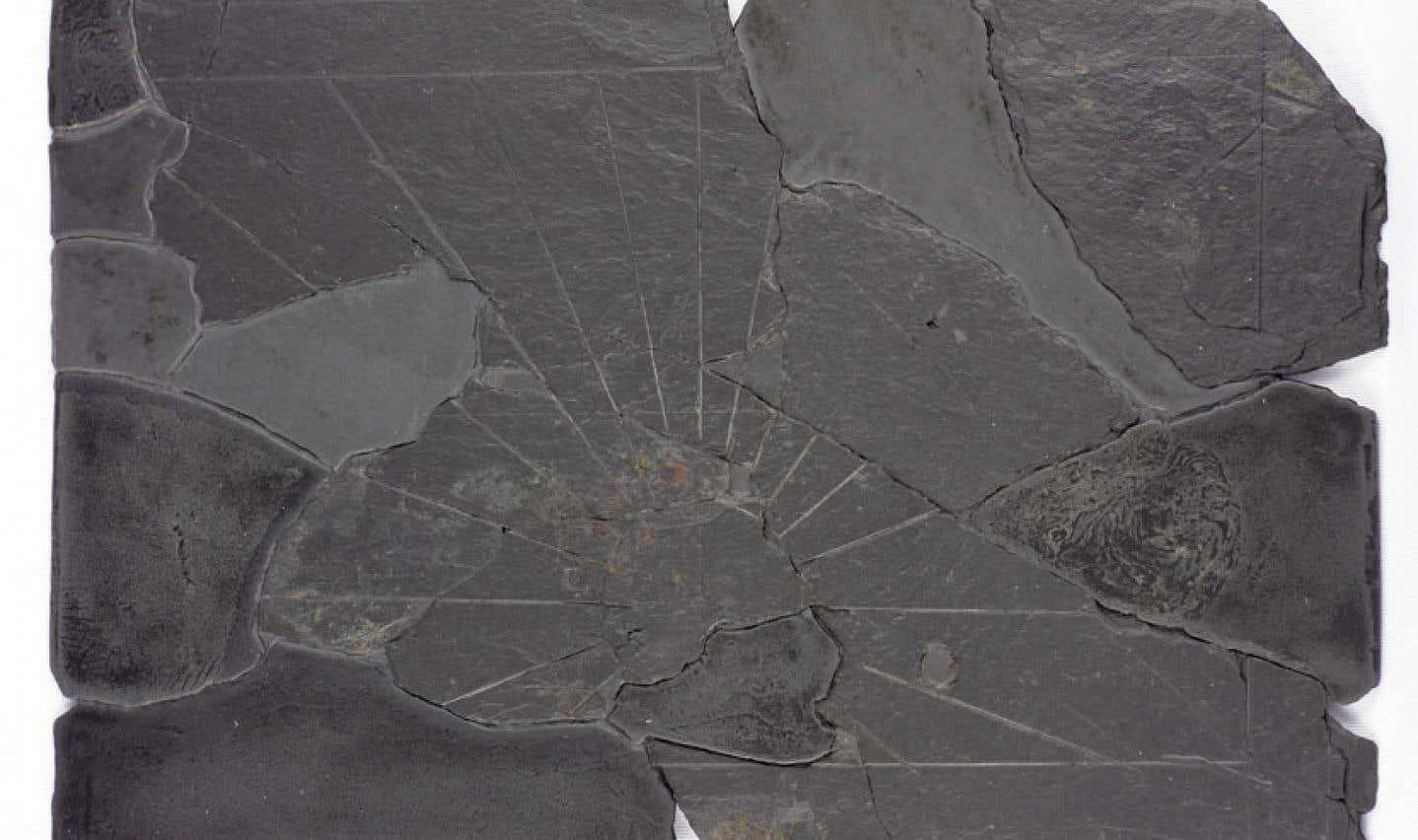 Un cadran solaire en ardoise a été mis au jour lors de fouilles menées par l'école de fouilles archéologiques de Pointe-à-Callière.