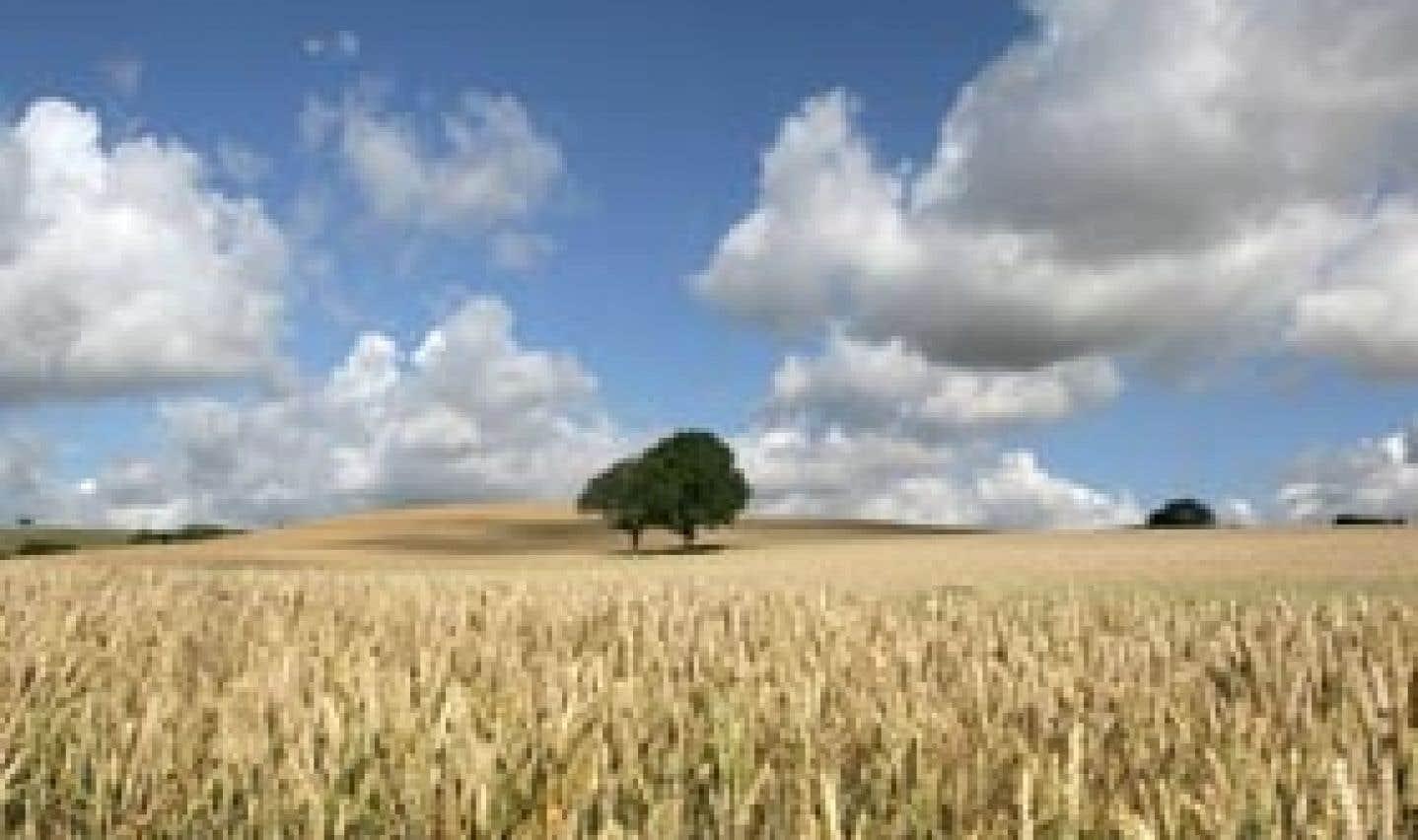 Qui sème les OGM récolte l'opposition
