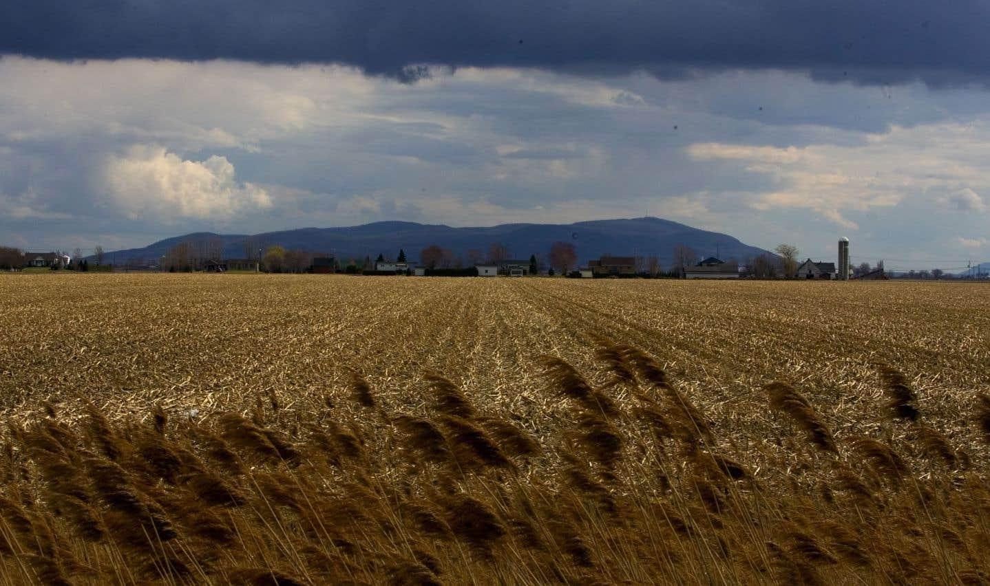 Le Centre a lancé il y a quelques jours un guide agricole pour soutenir le développement durable.