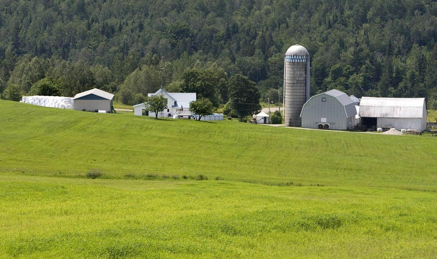 La vision du monde rural des politiques (1)