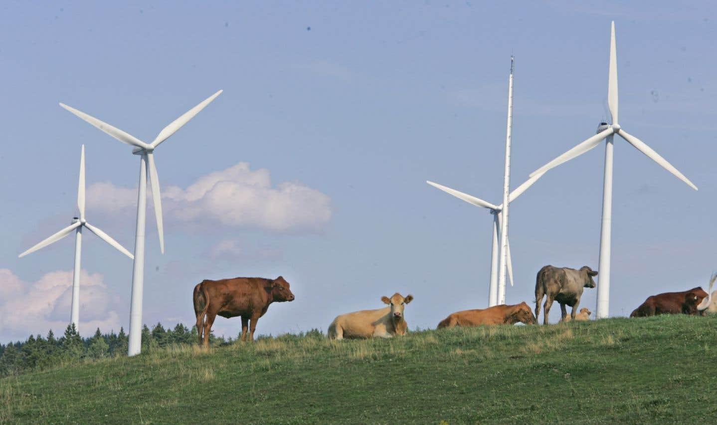 Québec mise sur l'éolien malgré le marché défavorable
