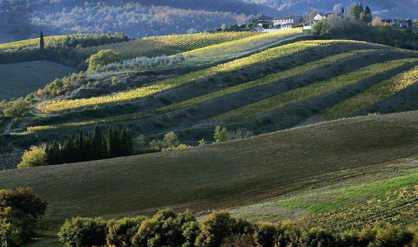 La Toscane, à l'aube