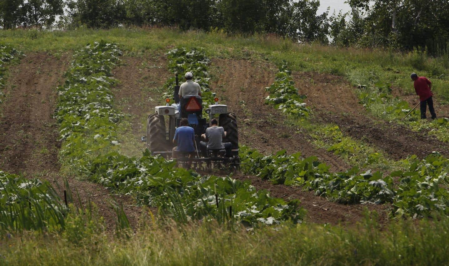 Les terres agricoles doivent être protégées, dit l'UPA