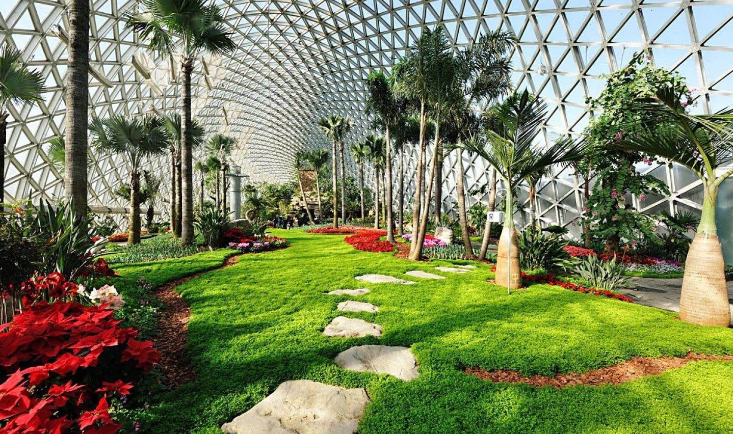 Des applications utiles pour identifier les v g taux le - Jardin botanique de montreal heures d ouverture ...