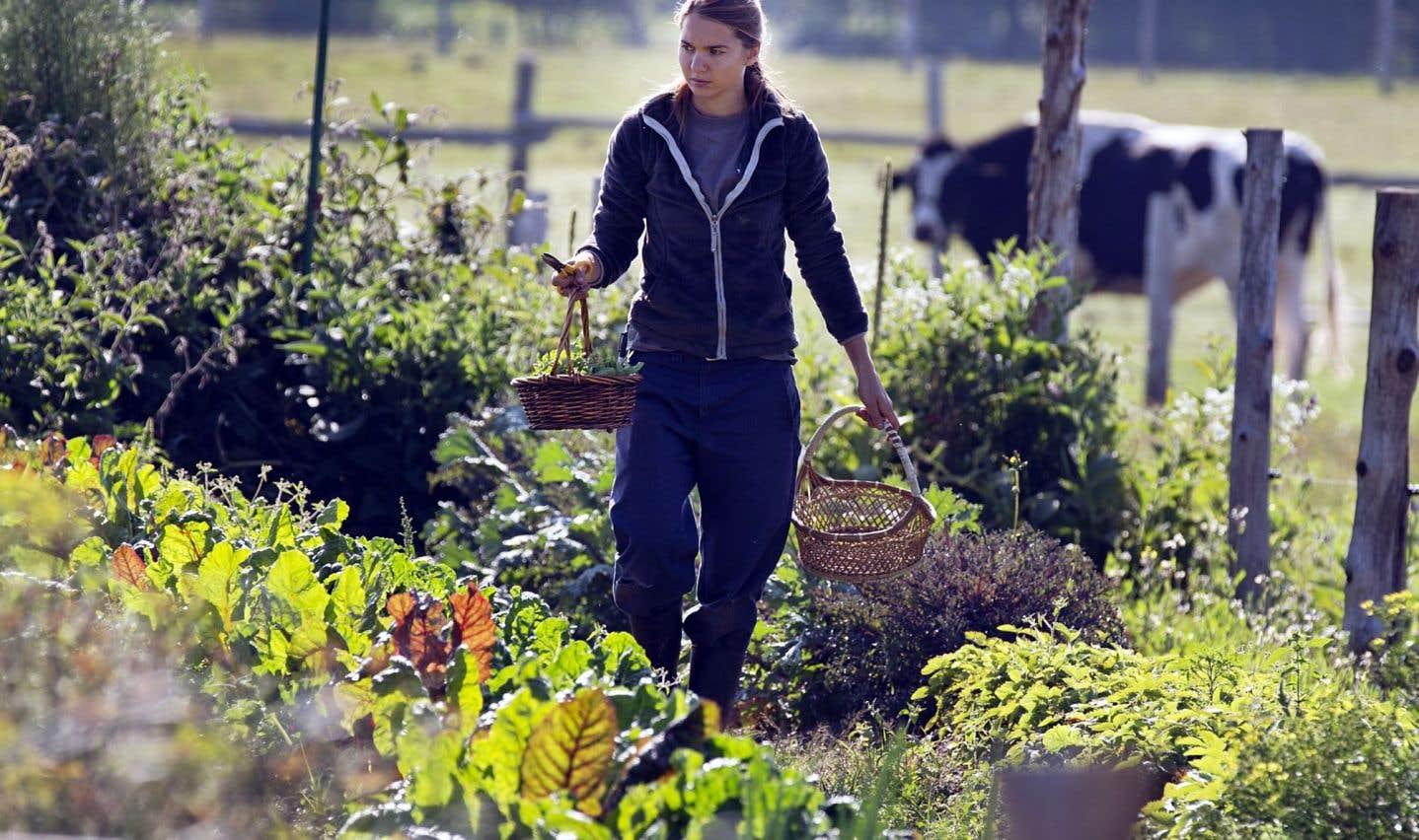 Le rêve d'une petite ferme est bien possible en Colombie-Britannique, en Alberta et à l'Île-du-Prince-Édouard, mais pas au Québec.