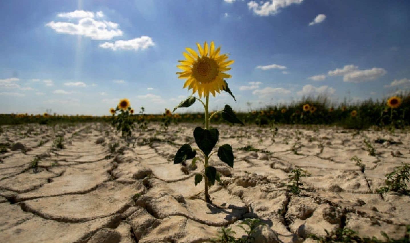 GES: les scientifiques de plus en plus pessimistes