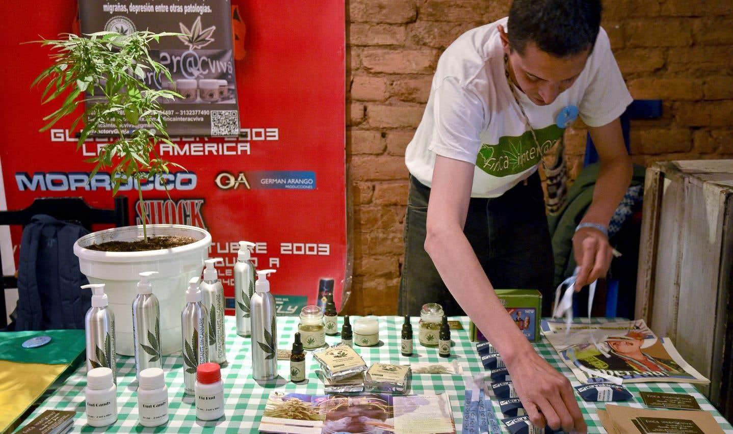 L'Uruguay a été le fer de lance de la légalisation de la marijuana en Amérique latine. Il fait partie des pays, comme la Colombie, le Pérou, le Chili, le Brésil, l'Argentine et le Mexique, qui ont décriminalisé les drogues, à divers degrés, entre 1988 et 2009.