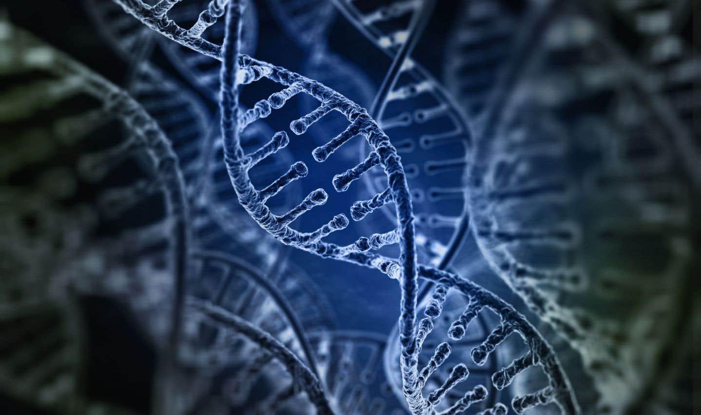 À quoi sert le gène de l'Alzheimer?