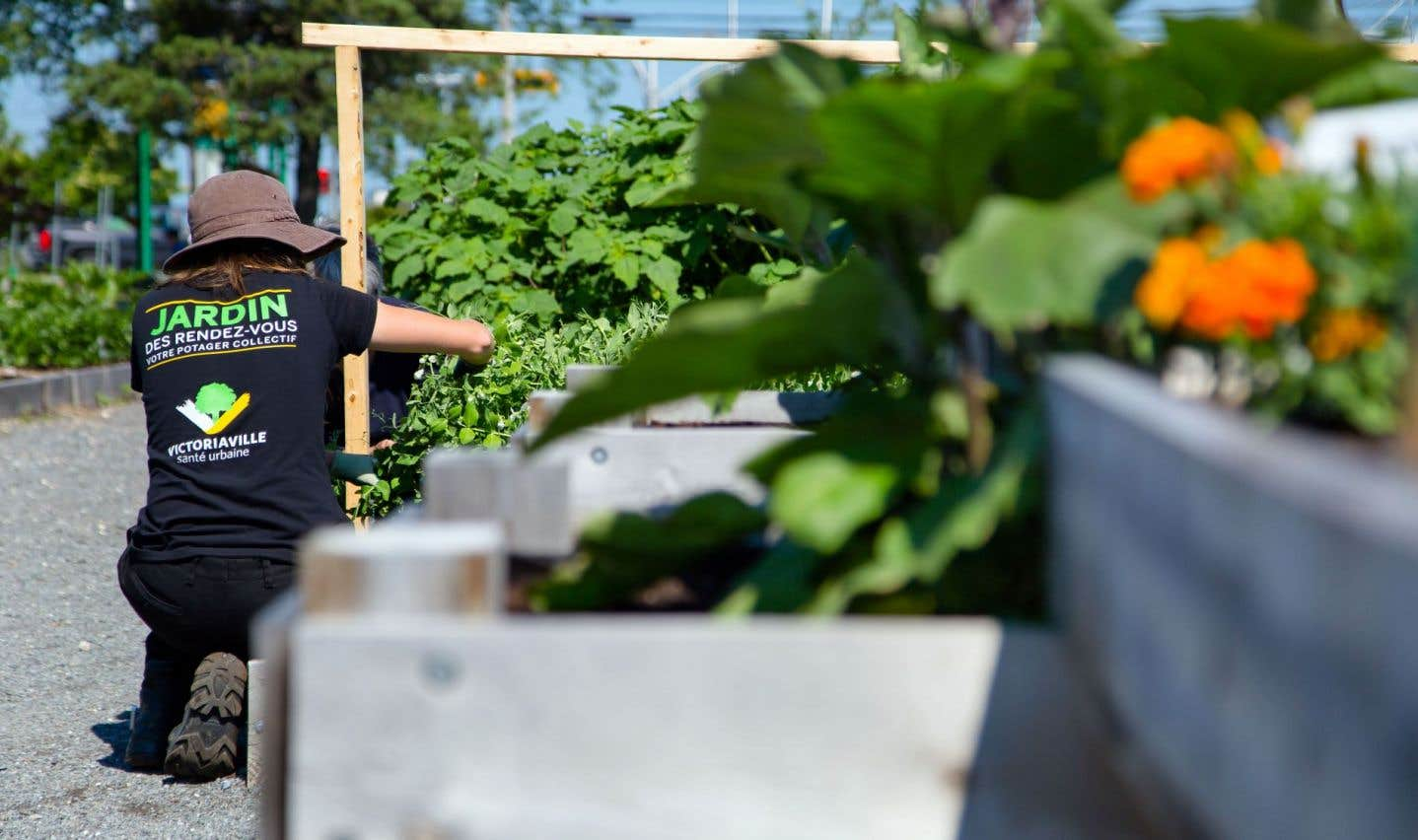Victoriaville se veut à l'avant-garde des villes vertes