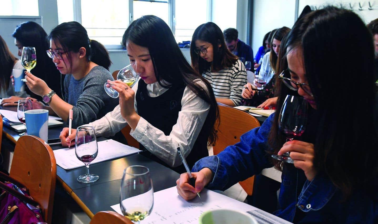 Des étudiants chinois vont percer les secrets du vin de Bourgogne