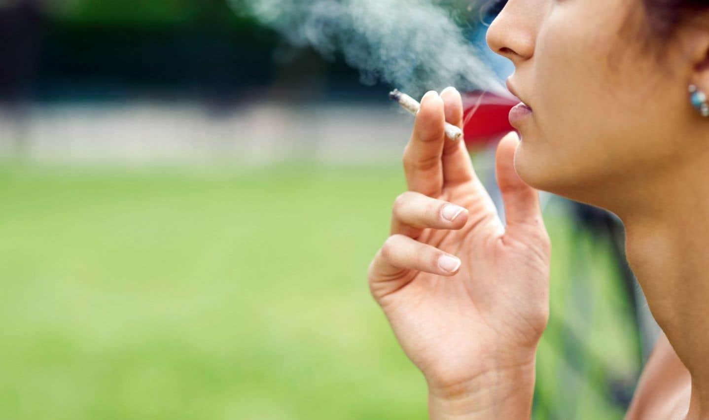 Les Québécois réticents face à la légalisation du cannabis