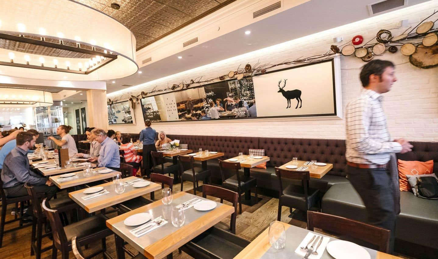 Le design soigné du resto est un cadre chaleureux où s'attable une clientèle internationale.