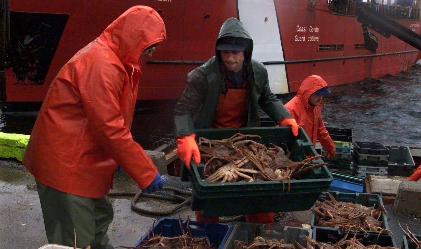 Ottawa met fin à la pêche au crabe pour protéger les baleines noires