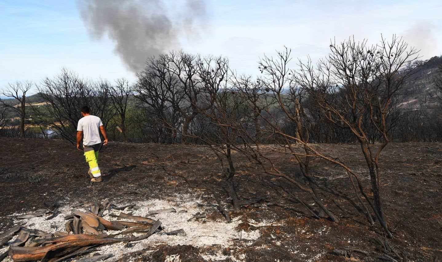 Amélioration sur le front des incendies en France et au Portugal