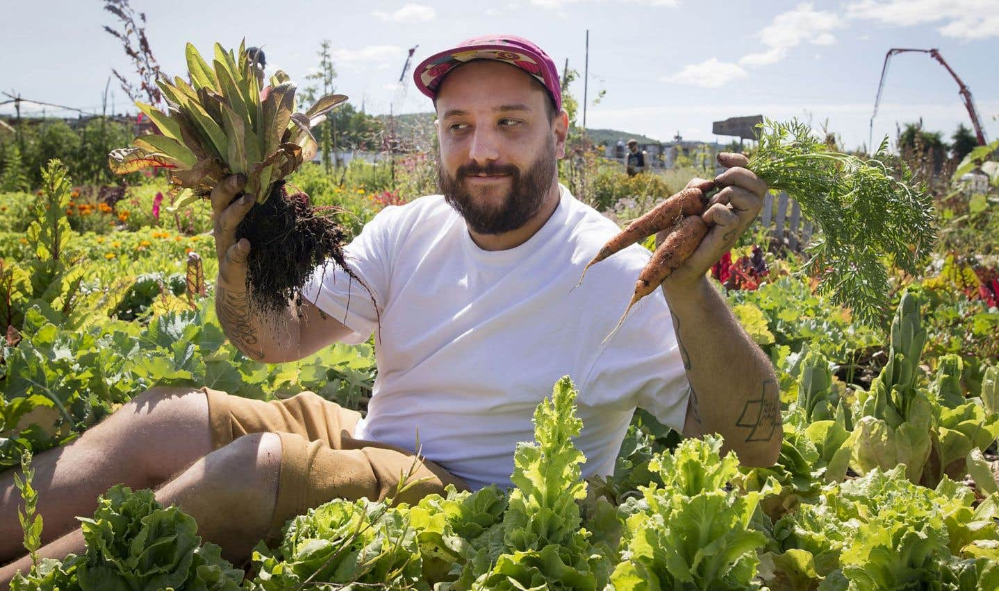 Pour son défi, le chef montréalais Antonin Mousseau-Rivard utilisera, entre autres, des aliments cultivés sur le site Virage MTL par la coopérative Bioma.